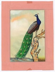 Peacock Miniature Wild Life Scene Paper Painting Indian Water Color Painted Art