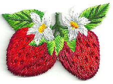 Strawberry - Country Growing W/Foliage & Flowers Embroidered Iron On Applique