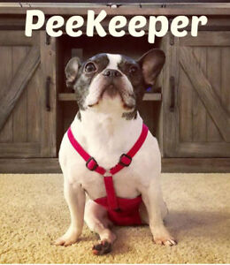 PeeKeeper Escape Proof Dog Diapers for Male and Female, Stay On Dog Diapers