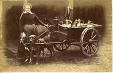 Belgique, la vendeuse de lait ambulante avec ses chiens  Vintage albumen print,