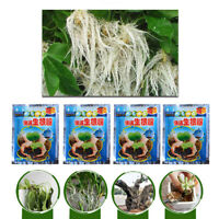 Rooting Powder Fast Root Seedling Germination Aid For Improve Survival Rate