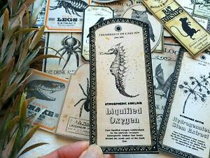 50 Vintage Witch Poison Magic Spell Apothecary Labels Ephemera Halloween Gift