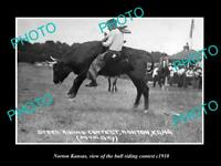 OLD LARGE HISTORIC PHOTO OF NORTON KANSAS, THE BULL RIDING CONTEST c1910
