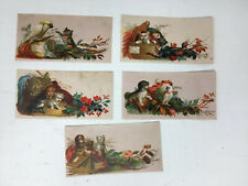 Victorian Calling Name Trade Cards Set Lot of 5 Animals Dogs Cats Birds Cockatoo