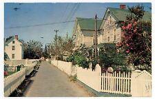 Street Scene in Tangier Island VA Rare Vintage Chesapeake Bay Chrome PC ca. 1967