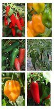 Chilli Pepper seeds-mezcla mexicana