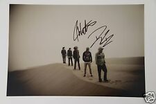 The Dirty Heads 20x30cm Bild + Autogramm /Autograph signed in Person