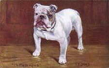 Bulldog Ch. Melampus by F.T. Daws in Spratt's Portrait Post Cards Series.
