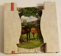 New Vintage 1988 Spode Collectible Horse Plate English Thoroughbred