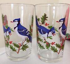 Vintage retro bluebird drinking glasses