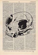 Crâne chat Dictionnaire Copie d'art vintage animal alternatif Taxidermie