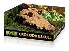 Exo Terra Crocodile Skull Terrarium Decor
