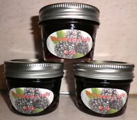 Fresh BLACKBERRY JELLY 1/4 Pint (4 oz.) Organic, No Chemicals, FREE SHIPPING