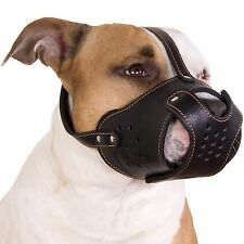 Secure PitBull Dog Muzzle Staffordshire Terrier Amstaff Leather Basket