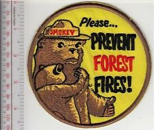 Smokey the Bear Carying a Bear Cub Asks All of Us ''Please, Prevent Forest Fires
