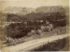 Constantine Algérie Vintage albumine ca 1880