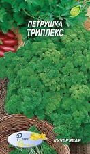 Graines de Persil frisé  Triplex - Plantes - 1500 graines