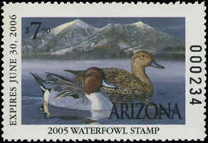 ARIZONA #19 2005 STATE DUCK NORTHERN PINTAILS by Tom Finley