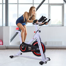 Bicicleta Estática Bicicleta de Fitness Pantalla LCD Carga 120kg Acero Blanco
