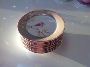 12 x PIP Studio Teller 21cm Early Bird  Khaki , exzellenter Zustand