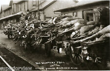 Vintage Hunting Hundreds of Whitetail Deer and Bear On Train Cars Mackinaw MI