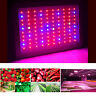 1000Watt LED grow light Full Spectrum for Indoor Medical Plants flower Veg Bloom