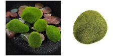 MUSCHIO SINTETICO decorazione acquario presepe plastico modellismo finto pianta