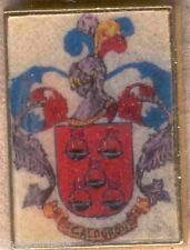 Heraldry PIN metallic del last name : CALDERON