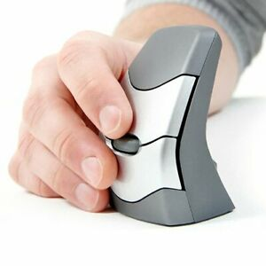 DXT Wireless Ergonomic Mouse 2 (Light Click)