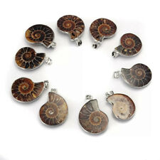 Polished Ammonite Fossil Pendant Necklace