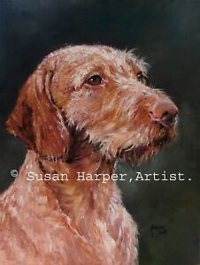 SALE Hungarian Wire-Haired Vizsla Signed Dog Print by Susan Harper Unmounted