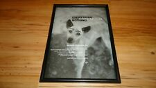 DAVID SYLVIAN everything and nothing-framed original advert