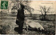 CPA Périgords cherchant la truffe (233895)