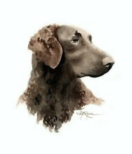 Curly Coated Retriever Painting 8 x 10 Art Print by Artist Dj Rogers w/Coa