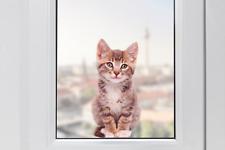 Hochwertige Fenstersticker Katze Süßes Kätzchen Fensterbilder Fensterfolie Deko