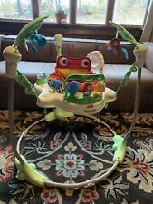 Fisher-Price Rainforest Jumperoo Slighty Used Super Condition