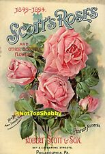 Vintage Style Roses~Seed packets~Shabby-CARDS/DIE CUTS/Gift Tags 24 Piece