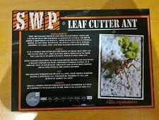 More details for sandwich wildlife park animal sign (leaf cutter ant)