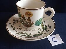 Villeroy & Boch Botanica coffee cup & saucer (minor flaws to saucer ) C