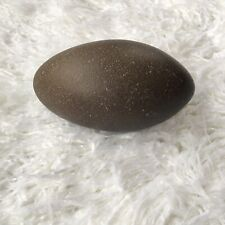 Emu Egg Empty Blown Out Textured Shells for Carving Art Crafts Single Hole Clean