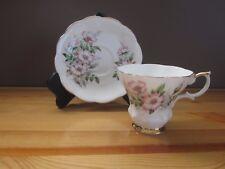 Royal Albert - Alberta Wild Rose Teacup & Saucer