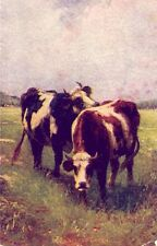 In Pastures Green two steer 1913