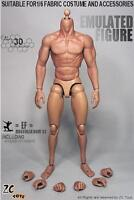 IN STOCK ZC Toys 1/6 Scale 3.0 Muscular Figure Body FOR Hot Toys TTM19