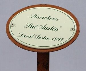 Rose Sign, Rose Connector Enamel, Shrub Rose : Pat Austin, David Austin 1995