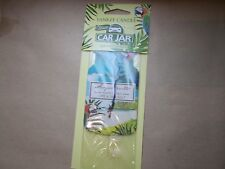 Yankee Candle USA Deerfield RARE mousseux Cannelle Voiture Bocal Ltd Edition