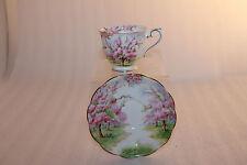 "Vintage Royal Albert Crown Tea Cup & Saucer ""Blossom Times"""
