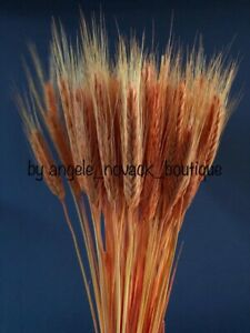 """100 STEMS DRIED WHEAT/RYE FOR FLOWERS ARRANGING READY TO USE ORANGE BOUQUET 20"""""""