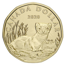 2020 Canada Black footed ferret Specimen Loon Dollar $1 coin only - IN STOCK