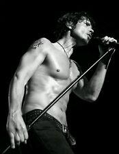 """Chris Cornell Soundgarden Lead Singer 1964-2017 R.I.P B&W Silk Poster 21""""×14"""""""