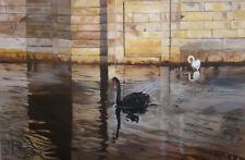 Cygne noir et cygne blanc, Peinture à l'huile originale Anne Zamo
